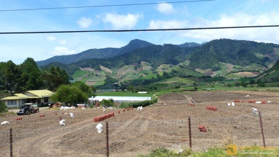 Zemědělské využívání úrodné sopečné půdy v oblasti Cerra Punta