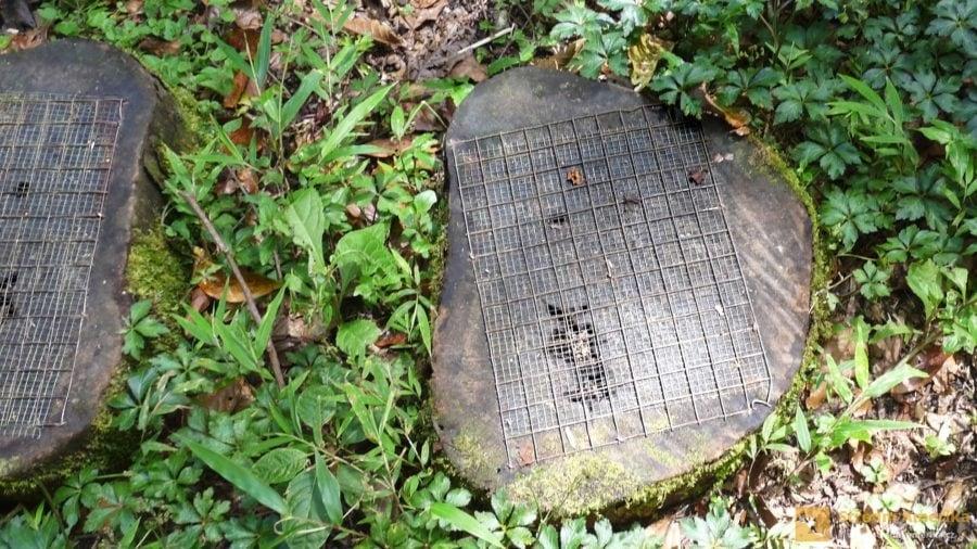 Kvesalí stezka, protiskluzová opatřená na dřevěných stupech.