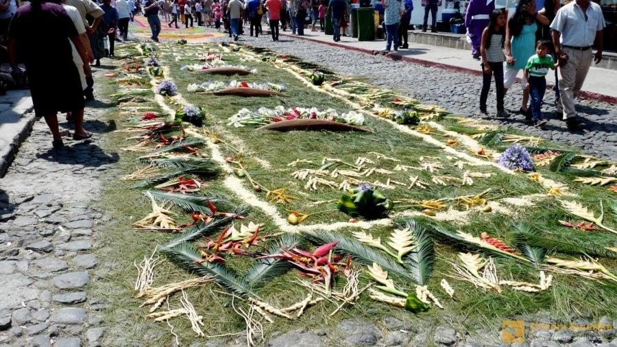 Antigua Guatemala, velikonoční amflobra, koberec z květin.